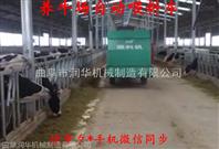 牛羊自动喂料车型号 电动饲料撒料车厂家