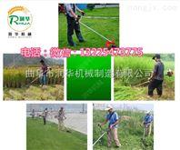 杭州园林公司割草机 多用途高效率除草机