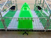 湖北养猪设备母猪产床 母猪分娩床厂家电话