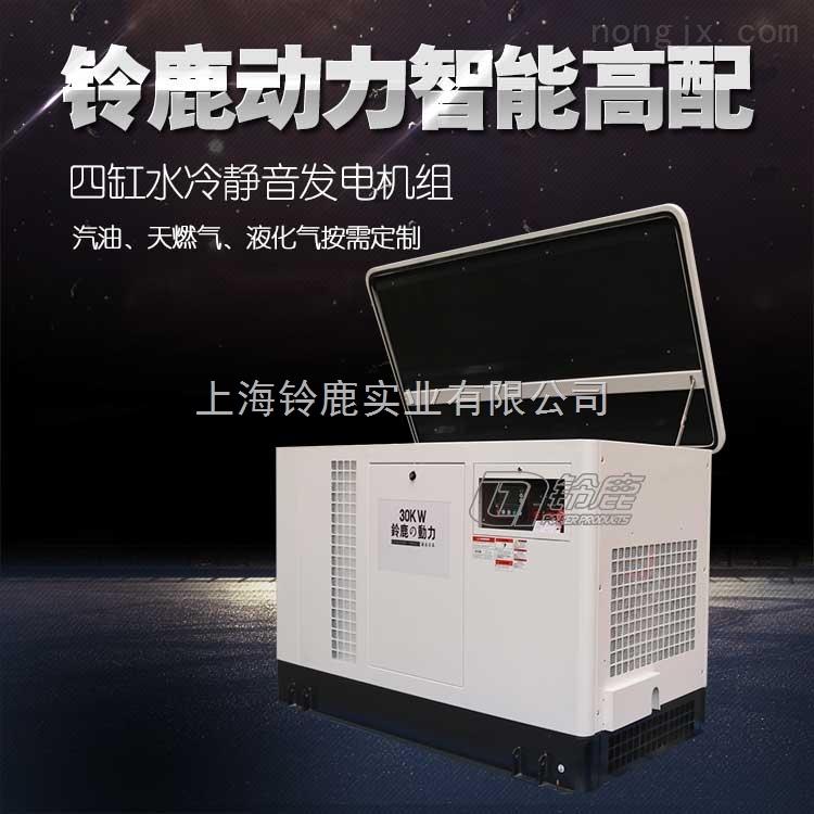 铃鹿多燃料汽油发电机