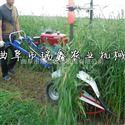 rxjx-sgj柴油油菜艾草收割机 苜蓿草割晒机型号