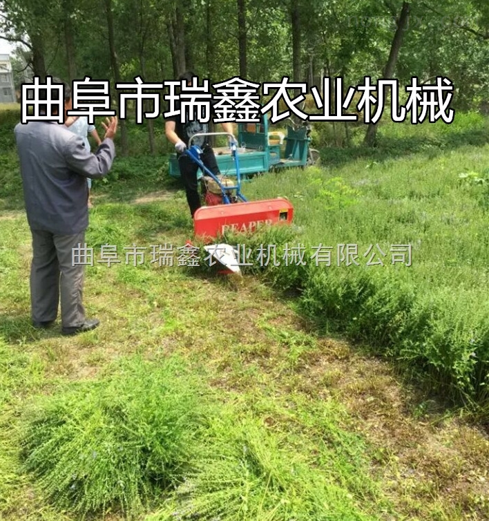 高效养殖牧草收割机 多功能麦稻割晒机