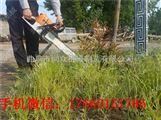 新款汽油起树机 便捷式移苗机 带土球挖树机