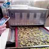 网带式菊花烘干机怎么样 菊花微波杀菌设备