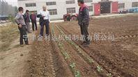 宁津田耐尔农用多功能辣椒移栽机价格