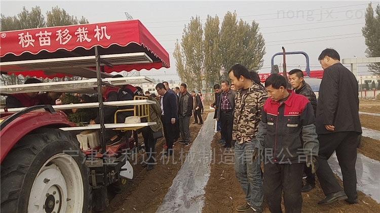 2ZBX-2-专业生产旱地秧苗机*田耐尔西红柿移栽机