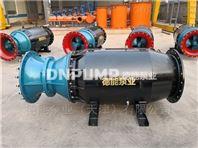 广东湛江潜水轴流泵厂家对接