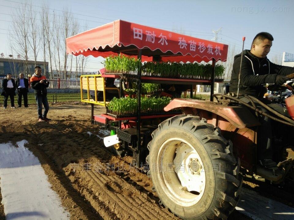 2ZBX-2-结构合理使用安全金利达旱地蔬菜移栽机
