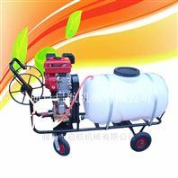 果园大容量喷雾器 卫生消毒打药机厂家