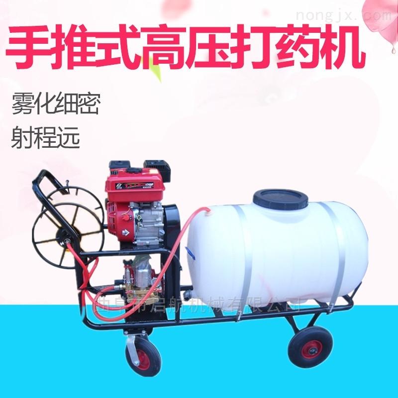牧業消毒噴霧器 葡萄園行走式打藥機型號