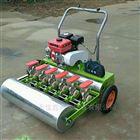 JX-BZ油菜香菜精播机厂家 汽油手推式施肥播种机