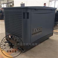 基站项目20KW汽油发电机物资