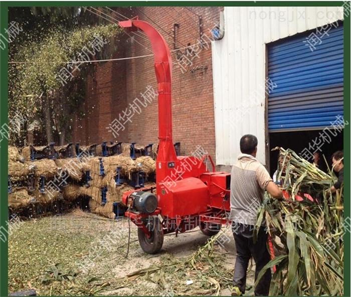 铡草揉丝粉碎机 畜牧养殖饲料铡草机型号