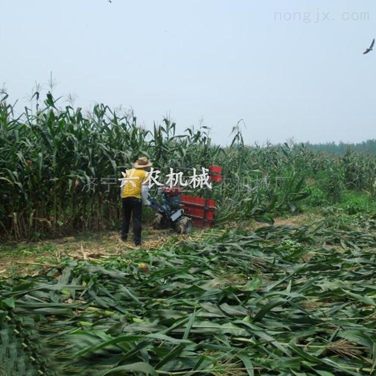 新款农业专秸秆收割机 大豆牧草收获机