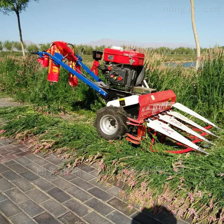 四輪前置牧草收獲機 自走式柴油油菜割曬機