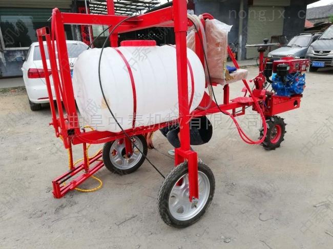 高压泵喷药车 柴油三轮打药车 喷雾器杀虫车