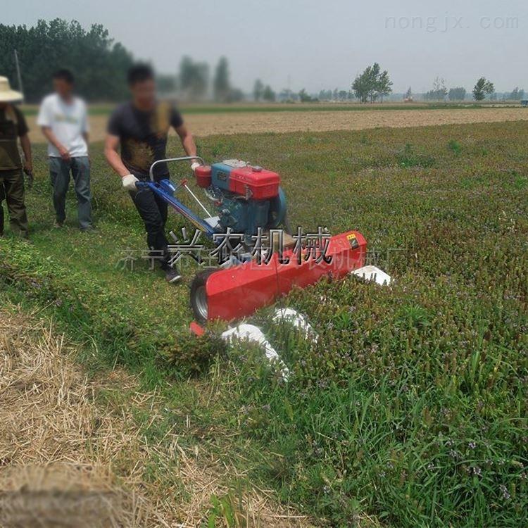 皇竹草收割机价格 手扶式稻麦割晒机厂家