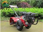 农户用大棚整耕松土机 手推式除草机开沟机
