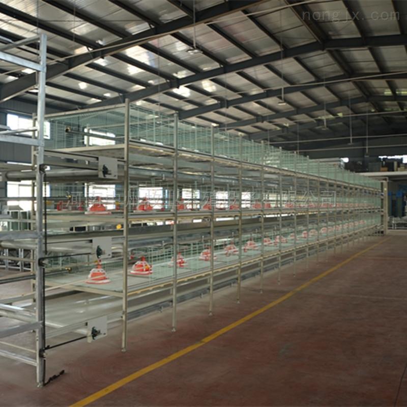 专业鸡笼厂 自动化养鸡设备  放心养殖品牌