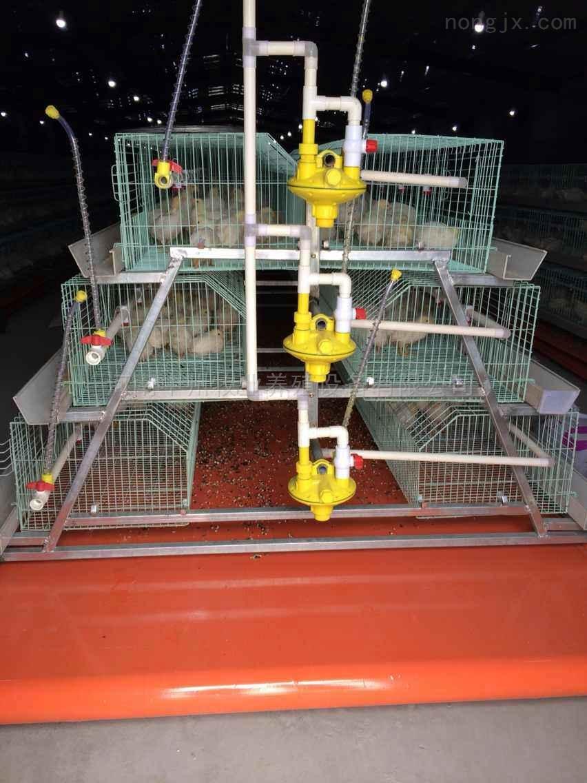 鸡笼厂 乳头饮水器 养鸡饮水设备 环保安全