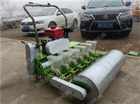 福州量身定做蔬菜播种机 菜田洋葱穴播机