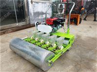 白菜下种机 胡萝卜精播机 定做多行播种机