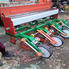 长期自作蔬菜播种机 加大多行青菜种植机