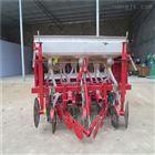 型号齐全菜苗播种机 汽油种植机设备农用