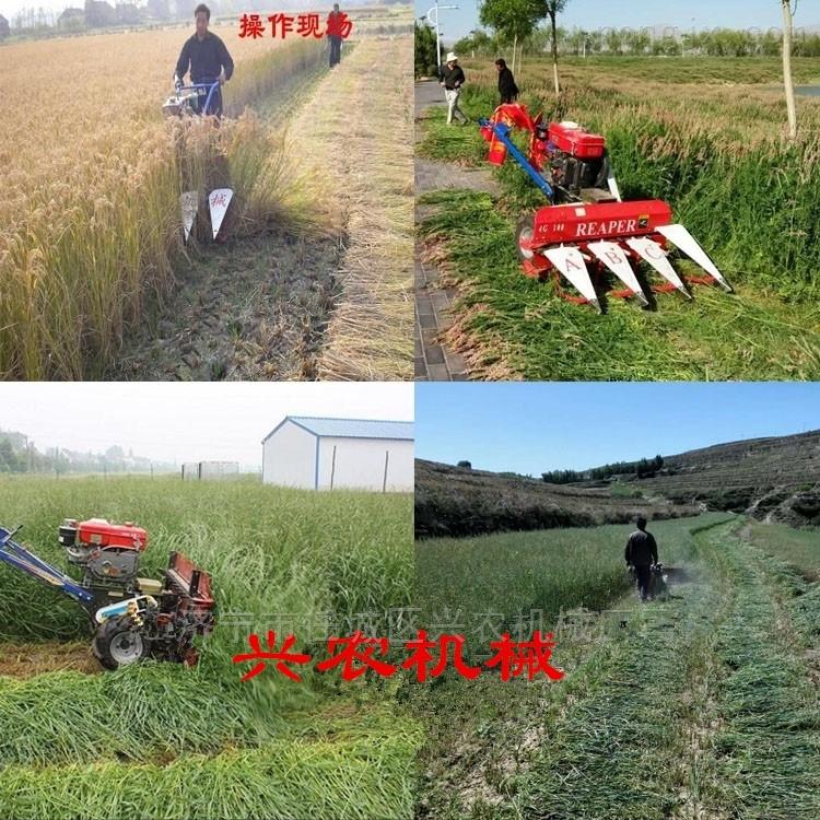 四輪帶鏈條油菜花收割機小型玉米割曬機價格