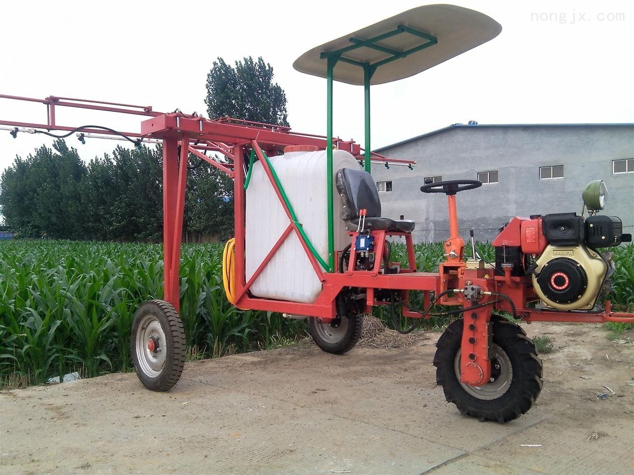 果园农用喷雾机 手推式打药机 柴油喷药机