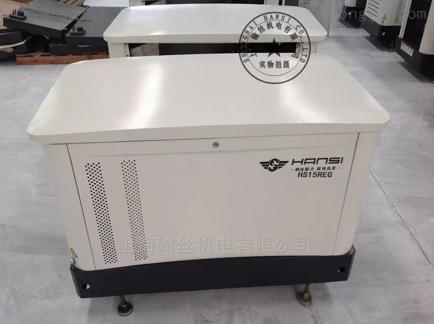 翰丝HS15REG汽油发电机