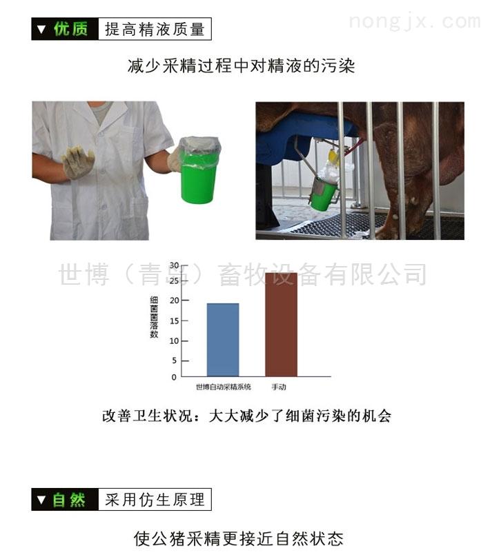 青岛半自动猪精YE灌装机-猪人工授精服务站