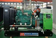 工厂废水式120千瓦沼气发电机组价格