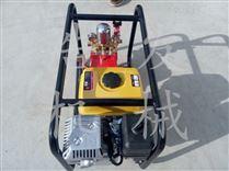 高壓機動噴霧器 大面積農田噴霧打藥機型號
