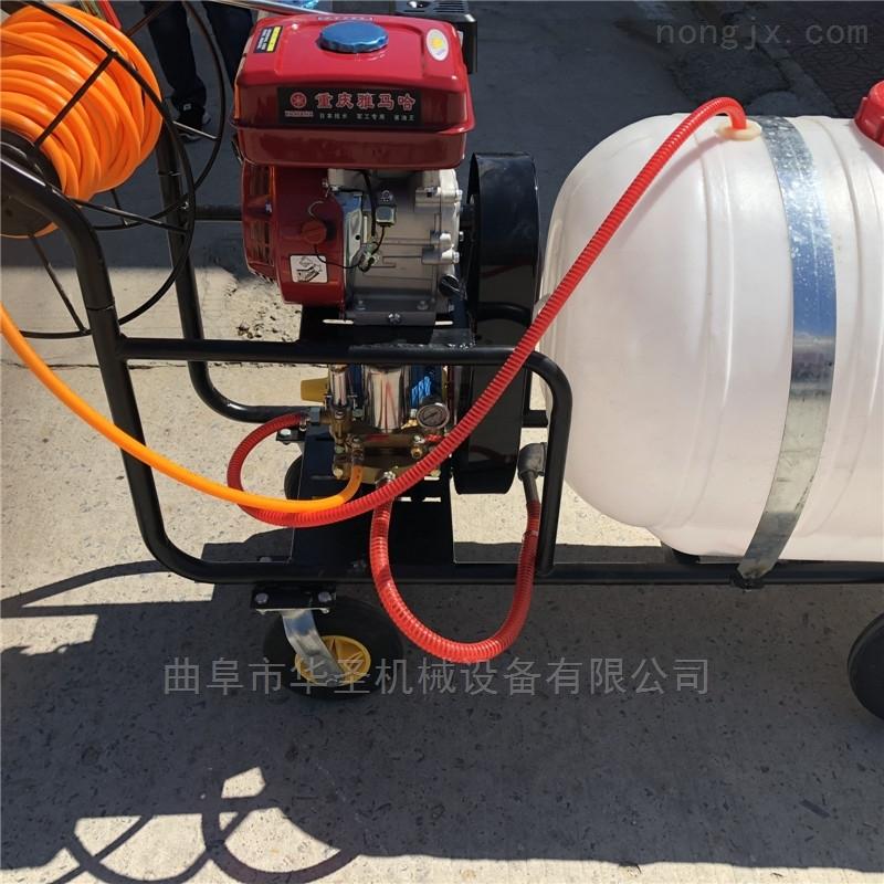 农作物汽油喷雾器园林打药车喷雾机