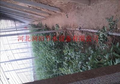 四川朝天区滴灌带优质灌溉