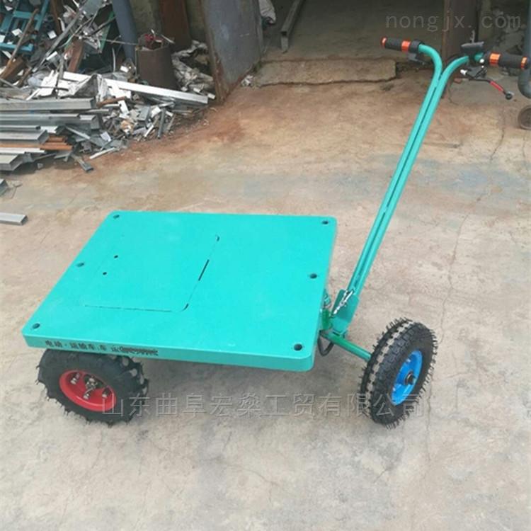 电动车 小型手推车 电动平板车