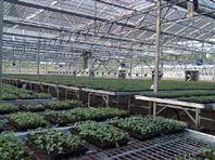 温室移动喷灌机,安平华耀农业设施有限公司