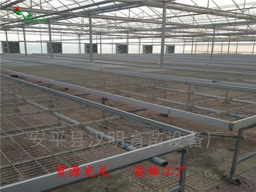 貴陽農業大棚移動苗床網未來發展前景