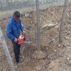 铲头式挖树机 快速起苗机