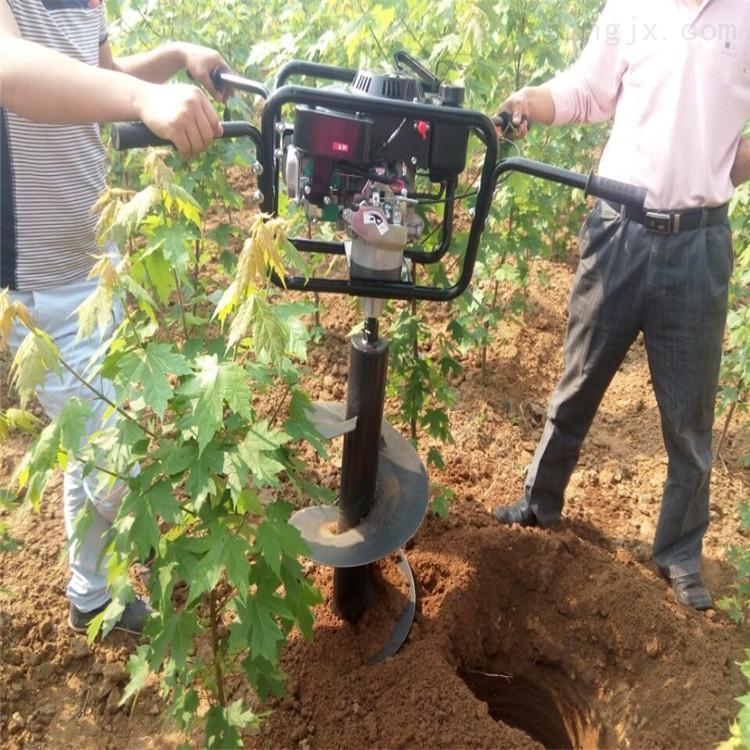深坑地钻 硬质土地挖坑机 打洞机打桩机