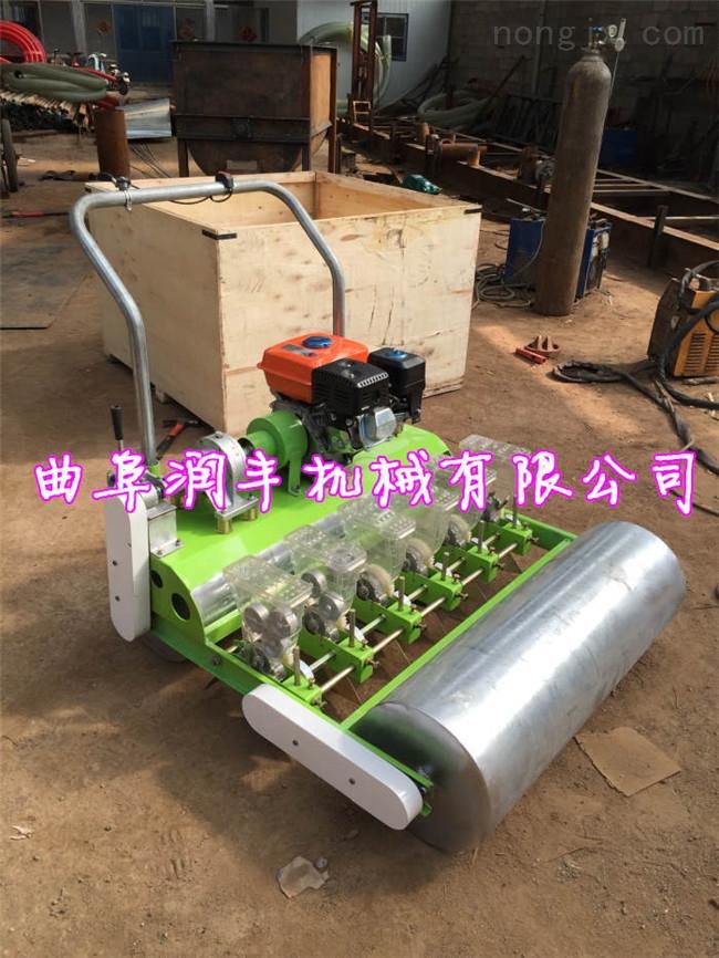 RH-BZJ-7.5-手推式芹菜种植点播机 拖拉机带蔬菜播种机