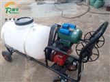 小區綠化除蟲高壓噴霧器 果蔬園林噴藥機