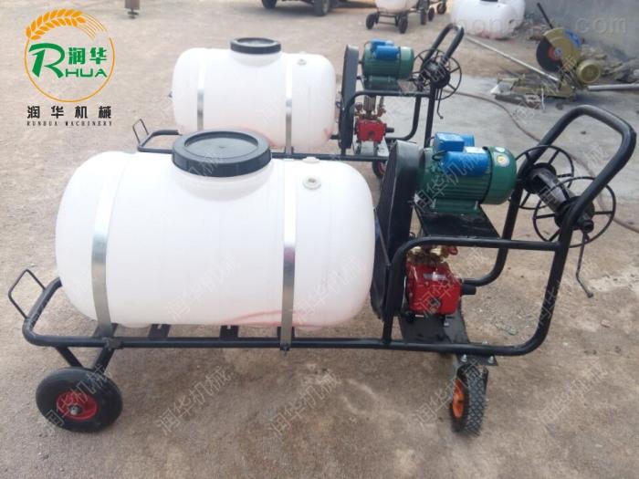 农作物喷药柴油喷雾器 拉管式果园喷药机