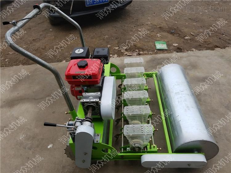 汽油自走平稳的蔬菜播种机 白菜精量穴播机
