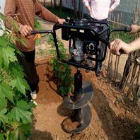 挖树坑机械 汽油钻洞机资料