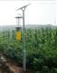 立杆式太阳能杀虫灯GSD-4