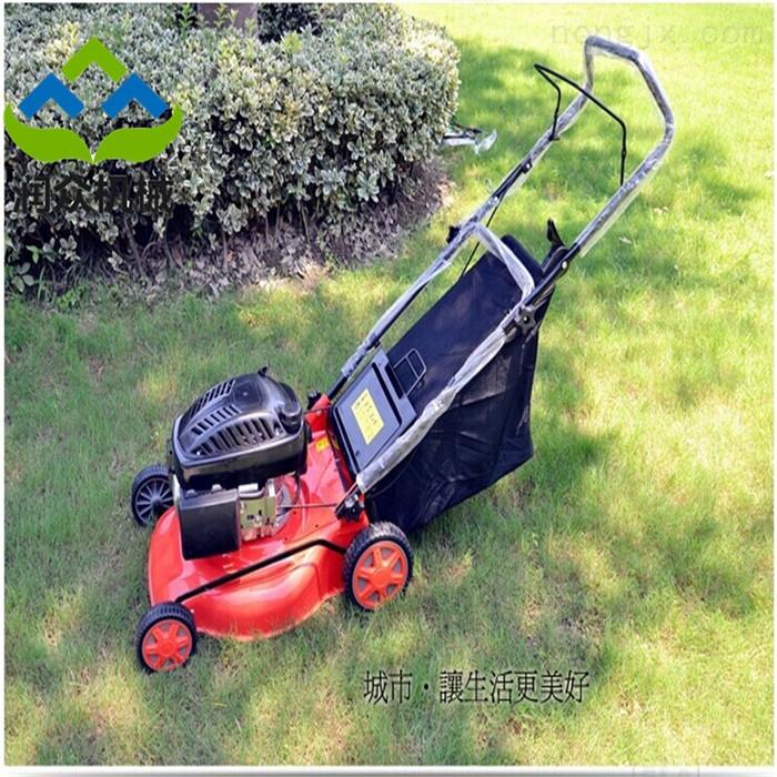 RZ GC-2-园林绿化专用草坪修剪机 手推式除草松土机