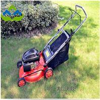 自走式草坪修剪机 果园背负式除草松土机