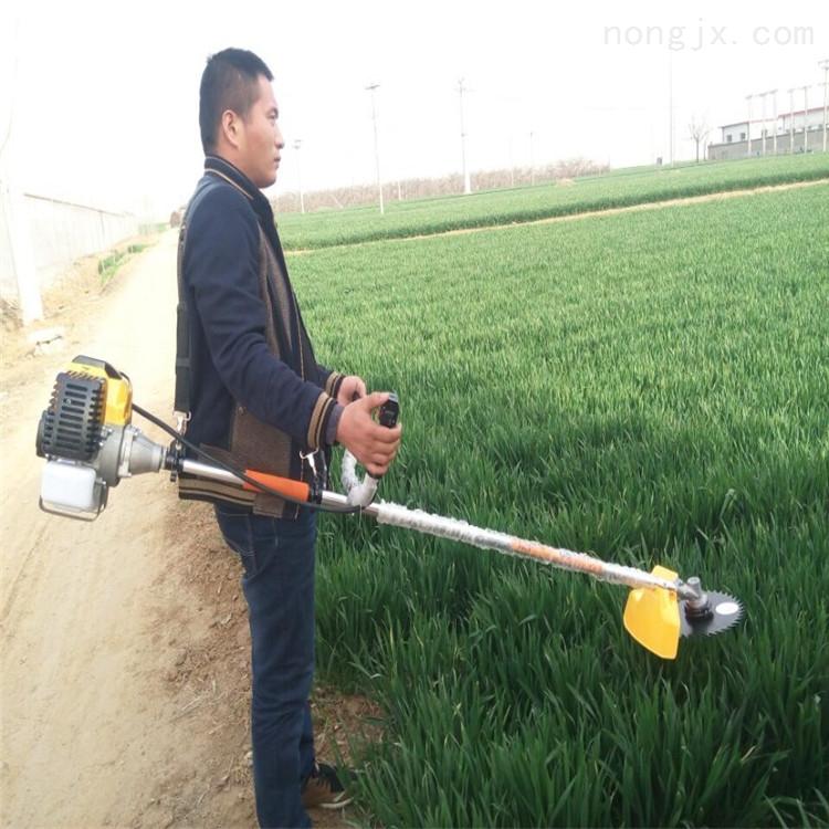 RH-GCJ-果树松土割草机 芦苇牧草收割机